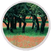 Indian Paintbrushes And Scattered Oaks Round Beach Towel