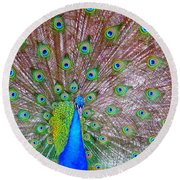 Round Beach Towel featuring the photograph Indian Peacock by Deena Stoddard