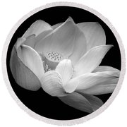Indian Sacred Lotus In Black And White Round Beach Towel