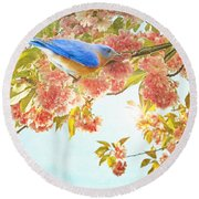 Indigo Bluebird On Pink Flowering Tree Branch  Round Beach Towel