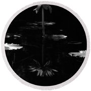 Infrared - Water Lily 03 Round Beach Towel