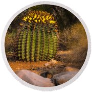 Round Beach Towel featuring the photograph Into The Prickly Barrel by Mark Myhaver