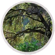 Into The Woods Round Beach Towel by Susan Wiedmann