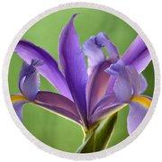 Iris Elegance Round Beach Towel
