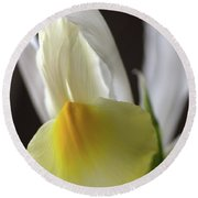 Round Beach Towel featuring the photograph Iris Flower by Joy Watson