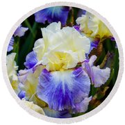 Round Beach Towel featuring the photograph Iris In Blue And Yellow by Patricia Babbitt