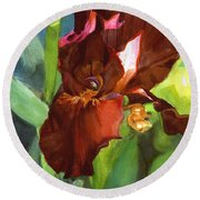 Watercolor Of A Tall Bearded Iris In Sienna Red Round Beach Towel