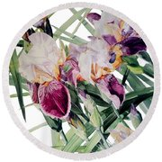 Watercolor Of Tall Bearded Irises I Call Iris Vivaldi Spring Round Beach Towel
