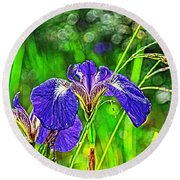 Round Beach Towel featuring the photograph Irises by Cathy Mahnke