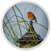 Irish Robin Perched On Garden Lamp Round Beach Towel