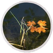It's Over - Leafs On Pond Round Beach Towel by Brenda Brown