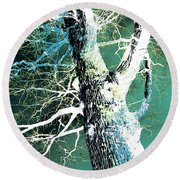 Round Beach Towel featuring the photograph Jade Forest by Shawna Rowe