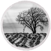 January Round Beach Towel by Penny Meyers
