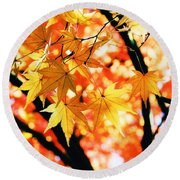 Japanese Maple Leaves Round Beach Towel
