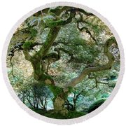 Japanese Maple Tree II Round Beach Towel by Athena Mckinzie