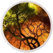 Japanese Maples Round Beach Towel by Angela DeFrias
