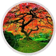 Japanese Red Maple Round Beach Towel