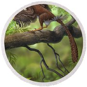 Jeholornis Prima Perched On A Tree Round Beach Towel