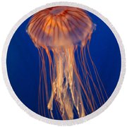 Round Beach Towel featuring the photograph Jelly Fish by Eti Reid