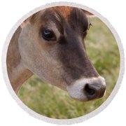 Jersey Cow Portrait Round Beach Towel