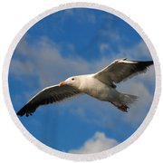 Jonathan Livingston Round Beach Towel