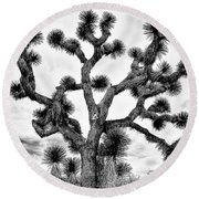 Round Beach Towel featuring the photograph Joshua Black And White by Benjamin Yeager