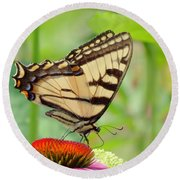 July Swallowtail Round Beach Towel by MTBobbins Photography