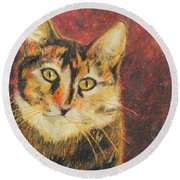 Round Beach Towel featuring the painting Kaco by Jeanne Fischer