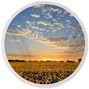 Kansas Sunflowers At Sunset Round Beach Towel