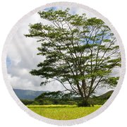 Kauai Umbrella Tree Round Beach Towel