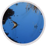 Killdeer Round Beach Towel by Steven Ralser