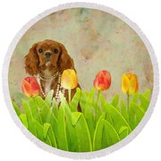 King Charles Cavalier Spaniel Round Beach Towel by Liane Wright