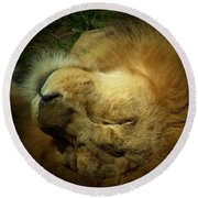King Of Peace,lion Round Beach Towel