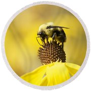 King Of The Coneflower Round Beach Towel by Penny Meyers