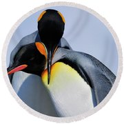 King Penguins Bonding Round Beach Towel