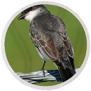 Round Beach Towel featuring the photograph Kingbird On A Wire by William Selander