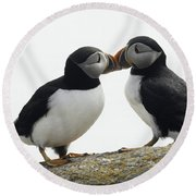 Kissing Puffins Round Beach Towel