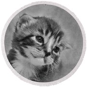 Kitten Just For You Round Beach Towel