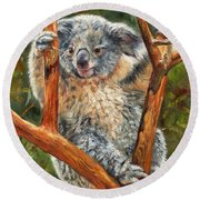 Koala Round Beach Towel