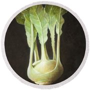 Kohl Rabi, 2012 Acrylic On Canvas Round Beach Towel by Lincoln Seligman