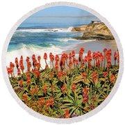 La Jolla Coast With Flowers Blooming Round Beach Towel