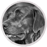 Labrador Sweetie Round Beach Towel