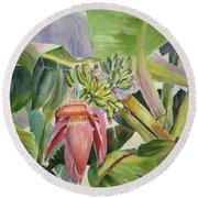 Lady Fingers - Banana Tree Round Beach Towel