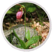 Lady Slippers At Moore State Park 3 Round Beach Towel