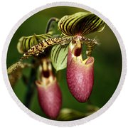 Lady Slipper Orchid Twins Round Beach Towel