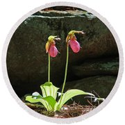 Lady Slippers At Moore State Park 5 Round Beach Towel