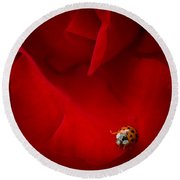 Ladybird In Rose Round Beach Towel