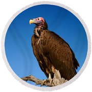 Lappetfaced Vulture Against Blue Sky Round Beach Towel by Johan Swanepoel