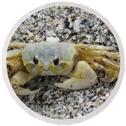 Round Beach Towel featuring the photograph Ghost Crab by Cynthia Guinn