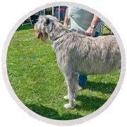 Large Irish Wolfhound Dog  Round Beach Towel